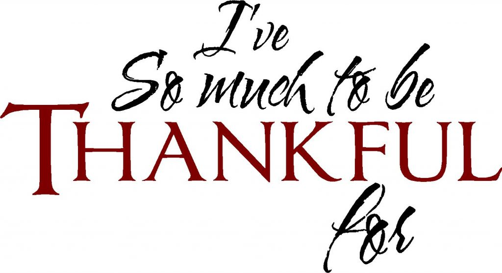 9 Reasons SEO's Should Be Thankful This Holiday