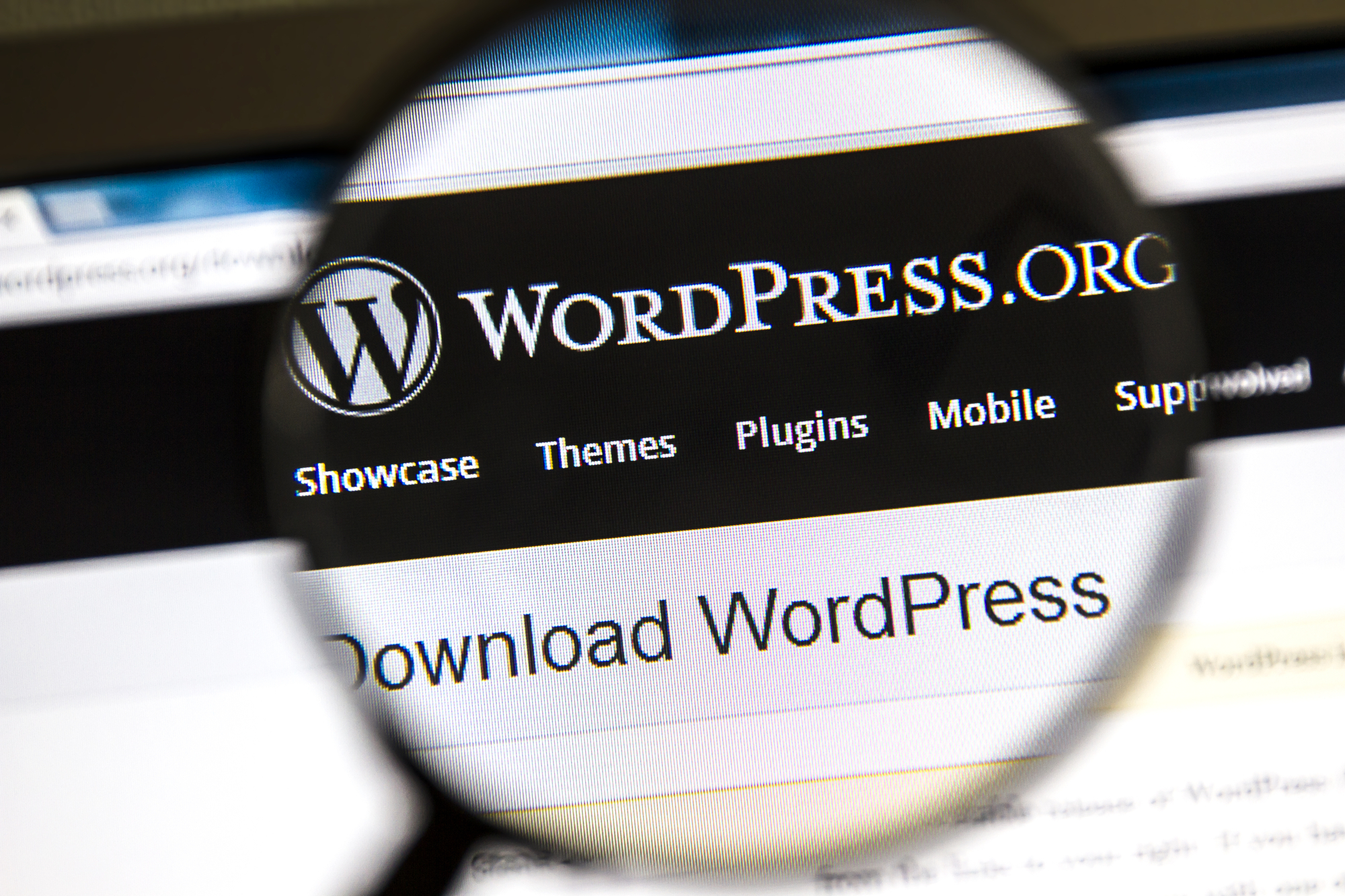 why update wordpress