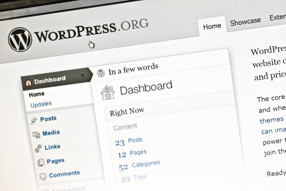 wordpress theme and plugin update